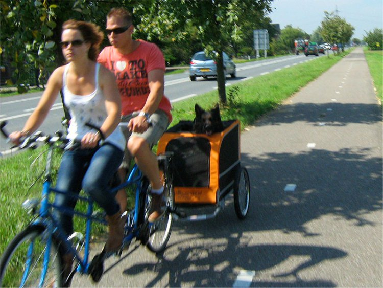 couple-on-tandem-with-dog-in-trailer
